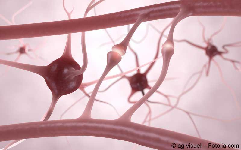 Leitlinie zu neuropathischen Schmerzen