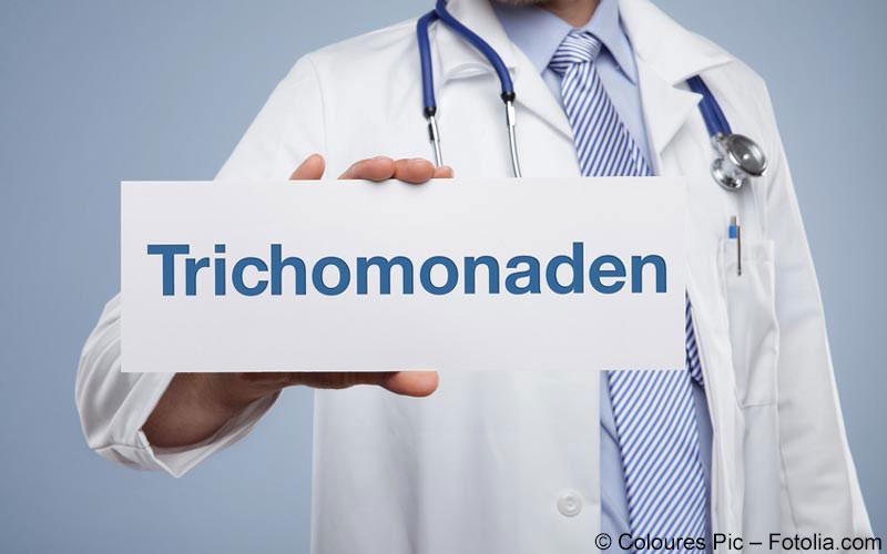 Trichomonaden